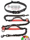 Pet Dreamland Hands Free Dog Leash for Running - Hiking, Walking, Dog Training - Waist Leash for Dogs