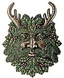 Greenman Winter Plaque Fantasy Designer Decoration Collectible