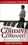 Cohesive Company - A Management & Leadership Parable -- Cohesively align mission, vision, goals, strategy, execution & culture