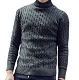 Product review for Alion Men's Soild Color Cable Twist Turtle Neck Pullover Sweater