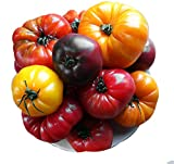 Please Read! This is A Mix!!! 30+ ORGANICALLY Grown Deluxe Tomato Seeds, Mix of 16 Varieties, Heirloom Non-GMO, Indeterminate, Old German, Chocolate Stripes, Ukrainian Purple, Amish Paste, from USA