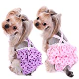 Alfie Pet - Frona Diaper Dog Sanitary Pantie with Suspender 2-Piece Set for Girl Dogs - Size: XL