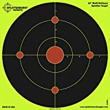 Splatterburst Targets - 12 inch Multi-Bullseye Reactive Shooting Target - Shots Burst Bright Fluorescent Yellow Upon Impact - Gun - Rifle - Pistol - AirSoft - BB Gun - Pellet Gun - Air Rifle (50 Pack)