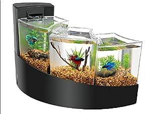 Top 10 Best Betta Fish Tanks Reviews Like An Expert