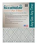 Accumulair Platinum 20x25x4 (19.5x24.5x3.75) MERV 11 Air Filter/Furnace Filters (2 Pack)