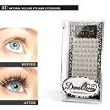 Demi Queen 3D Premade Fans Russian Individual Volumes Lashes Rapid Handmade Cluster Eyelash Extensions Thickness 0.07mm C Curl