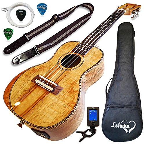 Ukulele Amazing Looking Spalted Maple With Armrest Glossy Finish With 3 Band Electric EQ Pickup (Concert)