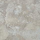 Achim Home Furnishings MJVT180210 Majestic Vinyl Floor Tile, 18 x 18 inches, Light Gray Slate, 10-Pack