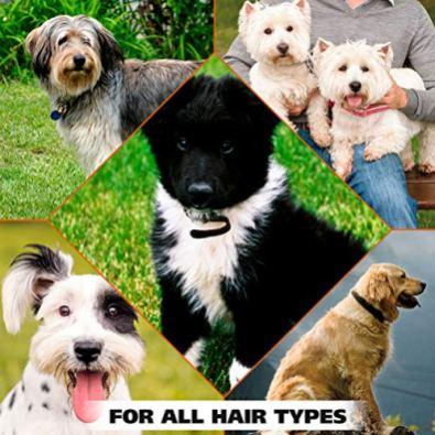 Wahl-Deodorizing-Refreshing-Pet-Deodorant-for-Dogs-Eucalyptus-Spearmint-for-Coat-Shine-Strengthening-8-Oz
