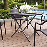 Crosley Furniture CO7205-BR Palm Harbor Outdoor Wicker Folding Table - Brown