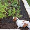 Repellent Cat Scat Outdoor Garden Mat 9829