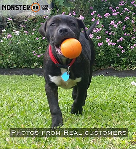 Indestructible Dog Ball - Tough Strong, 100% Non-Toxic Chew Toy, Natural Rubber Baseball-Sized Bouncy Dog Ball for Aggressive Chewers and Large Dogs 5