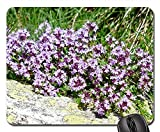 Mouse Pad - Thyme Blossom Bloom Flower Light Purple Violet