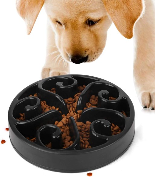 61B1CVjkwFL. AC SL1500 Best Slow Feed Dog Bowl Reviews and Buying Guide