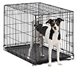 Dog Crate | MidWest iCrate 30' Folding Metal Dog Crate w/ Divider Panel, Floor Protecting Feet & Leak-Proof Plastic Tray | 30L x 19W x 21H Inches, Medium Dog, Black