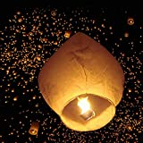 Z ZTDM 50 Pack Fire Sky Lanterns Chinese Paper Sky Flying Wishing Lantern Lamp Candle Party Wedding Wish (Kongming Wish Lanterns) (White)