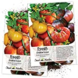 Seed Needs, Rainbow Tomato Mixture (10+ Varieties) Twin Pack of 70 Seeds Each Non-GMO