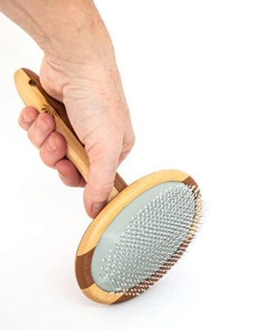 bamboo pet grooming brush