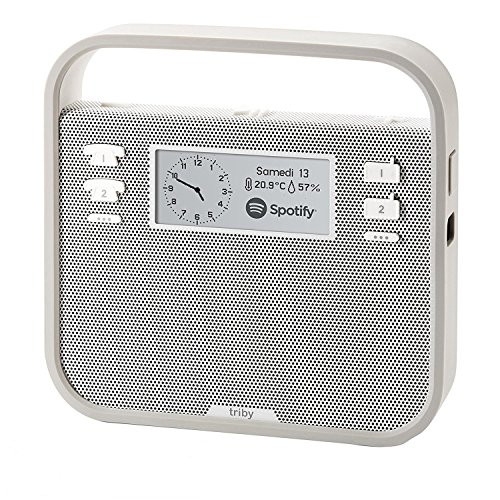 Invoxia Smart Portable Speaker with Amazon Alexa, Grey