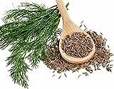 Cumin Herb 75 Seeds, 350 mg by Hirts: Seed; Herb