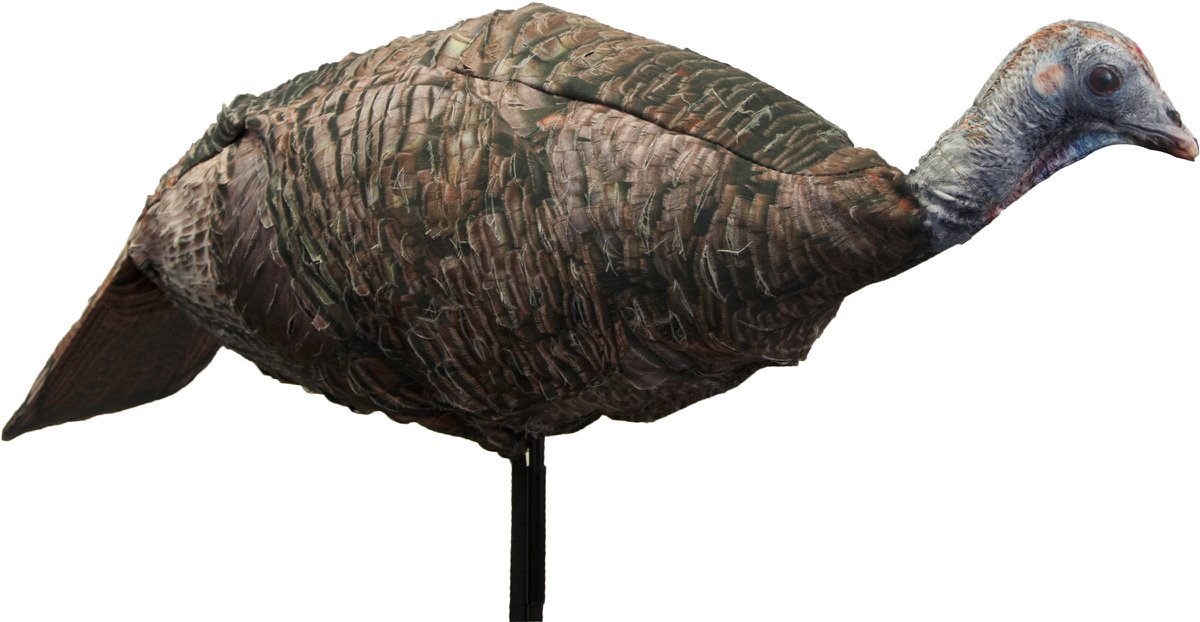 10 Best Turkey Decoys For The Money: Review & Buying Guide (2018)
