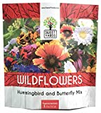 Wildflower Seeds Butterfly and Humming Bird Mix - Large Sealed Pouch 7,500+ Fresh Seeds - 23 Open Pollinated Annual and Perennial Species