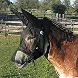 Product review for Cashel Quiet Ride Fly Mask With Ears and Long Nose for Mule/Donkey - All Sizes