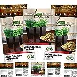 Home Chef Herbs USDA Organic Asian Herb Seeds for Planting Indoors Non GMO Asian Seeds: Thai Basil Seeds, Garlic Chives, Tokyo Long White Scallion, Lemon Basil Plant, Cilantro Seeds