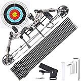 AW Pro Compound Right Hand Bow Kit w/ 12pcs Carbon Arrow Adjustable 20 to 70lbs Archery Set Camo
