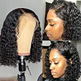 Dorosy Hair Lace Front Wigs Human Hair Wigs for Black Women Pre Plucked Brazilian with Natural Hairline Curly Hair with Baby Hair(8 inch)