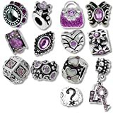 Timeline Treasures European Charm Bracelet Charms and Beads For Women, DIY Jewelry, Purple Birthstone February June