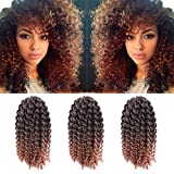 3pcs/Pack 10'' Afro Kinky Twist Hair Crochet Braids Ombre Braiding Hair Synthetic Marlybob Curly Crochet Hair Pieces (T1B/30)