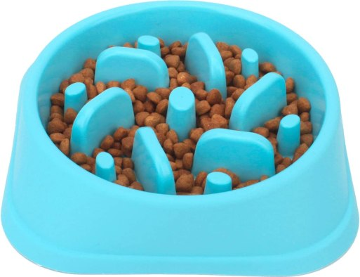 61TGVF3VucL. AC SL1500 Best Slow Feed Dog Bowl Reviews and Buying Guide