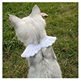 Stock Show Pet Small Dogs Cats Adjustable Cute Soft Suede Angel Wings Collars for Puppy Kitten Bunny Small Animals, White