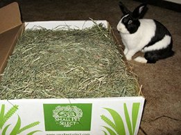 Small-Pet-Select-2nd-Cutting-Perfect-Blend-Timothy-Hay-Pet-Food