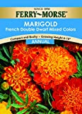 Ferry- Morse Marigold Dwarf Double Mixed Colors Flower Seed