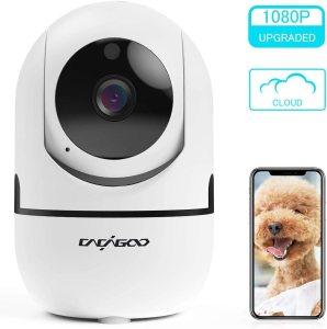 Ιταλικό Amazon και με κουπόνι |CACAGOO 1080P Internal WiFi camera, IP camera Wifi surveillance, wifi ip camera for Pets and Children, Baby Monitor with Night Vision and Bidirectional Audio
