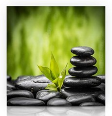 Image result for spring balance painting