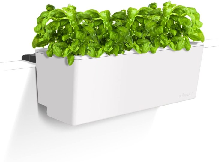 Amazon Prime Pick - Have fresh herbs year round with Glowpear's Self-Watering Mini Rail Planter - Useful Things to Buy on Amazon