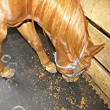 Product review for Greatmats Portable Interlocking Pebble Top Horse Stall Mats 15 Pack