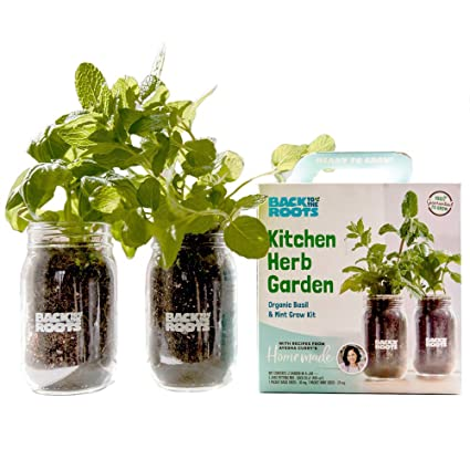 Amazon Com Back To The Roots 22206 New Kitchen Garden Complete Herb Kit Variety Pack Of Basil Mint And Cilantro Seeds Garden Outdoor