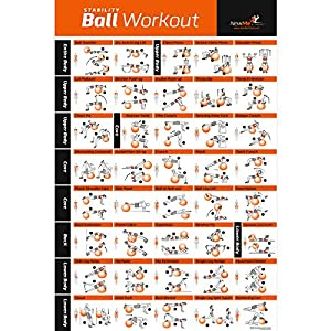 com exercise ball poster laminated total body workout