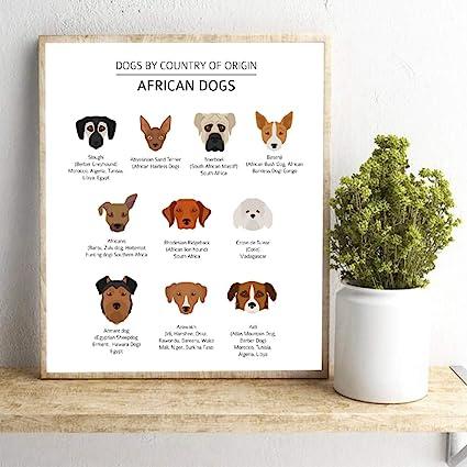 Danjiao Razze Di Cani Africani Stampe Wall Art Cani Per Paese Di Origine Poster Tela Pittura Immagine A Parete Decorazioni Per La Casa Amanti Dei Cani Regalo camera da letto 40x60cm: Amazon.it: