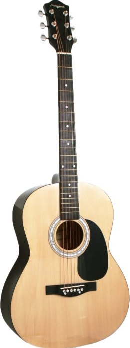 Best Martin Acoustic Guitar under $100