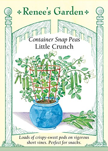 "Container Snap Peas""Little Crunch"""