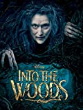 Into the Woods poster thumbnail