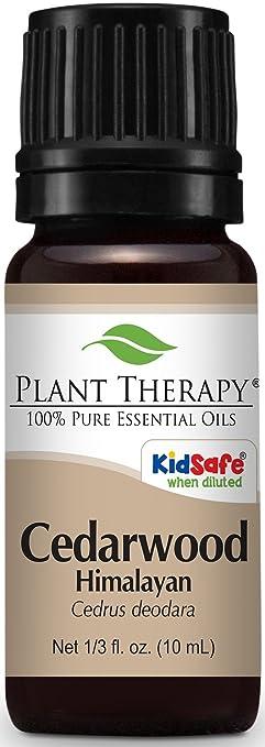 Plant Therapy Cedarwood Oil