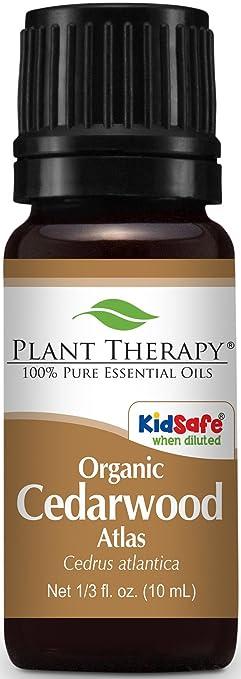 Plant Therapy Organic Cedarwood