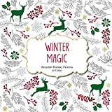 Winter Magic: Christmas Patterns to Color (Color Magic)