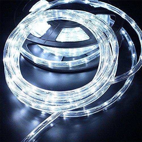 PYSICAL 110V 2-Wire Waterproof LED Rope Light Kit for Background Lighting,Decorative Lighting,Outdoor Decorative Lighting,Christmas Lighting,Trees,Bridges,Eaves (50ft/15M, White)